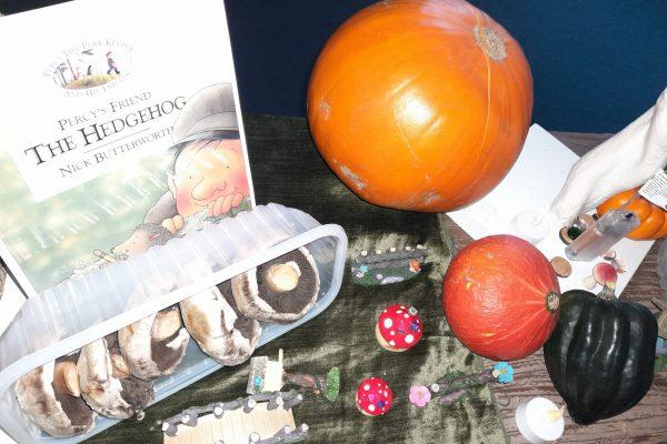 Pumpkin-mushroom-and-gourds-e1603096114343